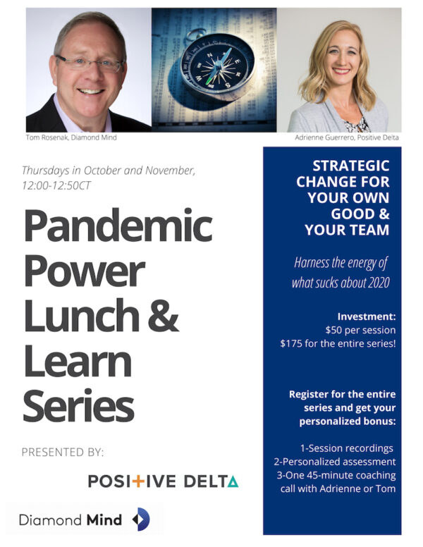 Pandemic Power Lunch and Learn Series